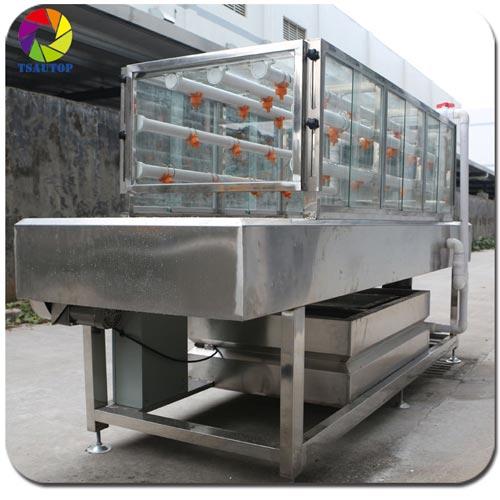 Semi Automatic Hydro graphics rinse Washing Machine